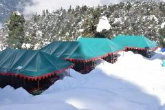 paradise-camp19