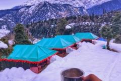 paradise-camp21