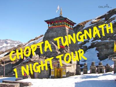Chopta 1 Night Weekend trek package