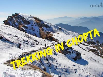 Chopta Treks and Routes