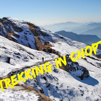 Trekking in Chopta