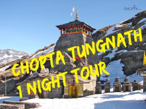 Chopta 1 Night Short tour package