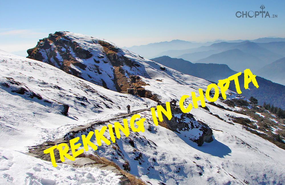 Trekking in Chopta
