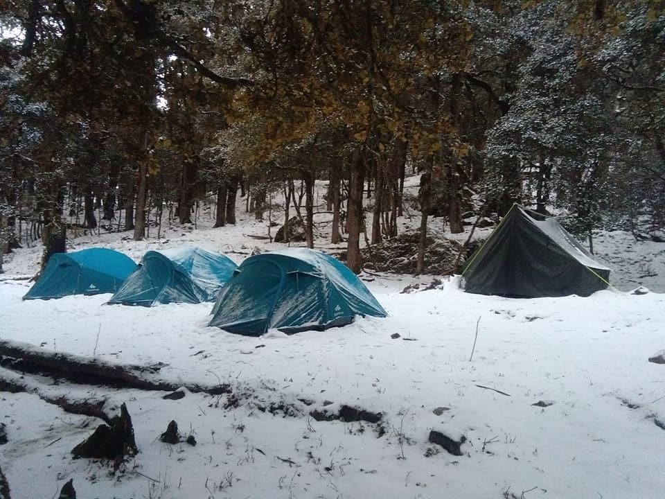 Chopta Camping
