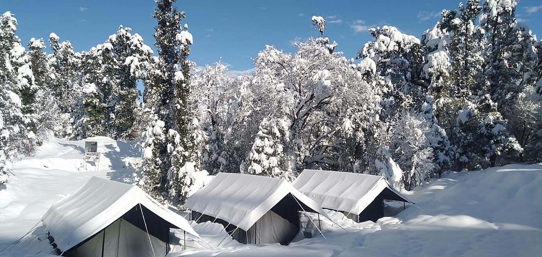 Chopta Camp 05
