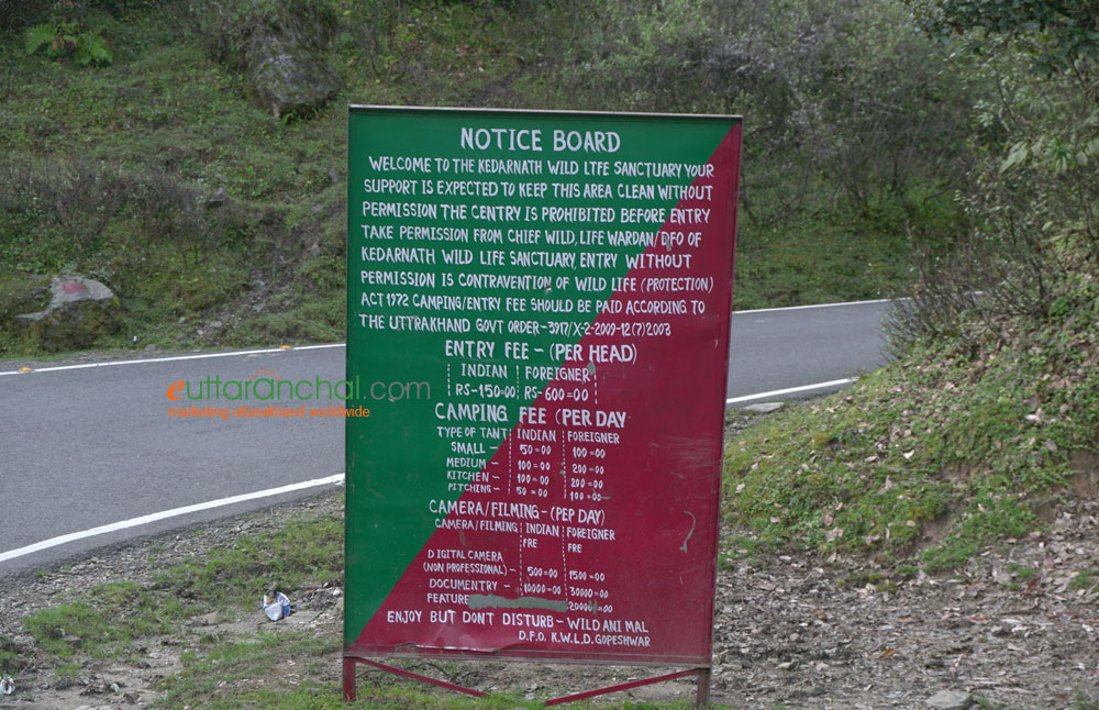 Chopta Camping Charges