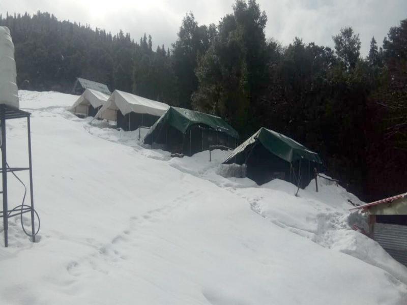 Chopta Camp 04